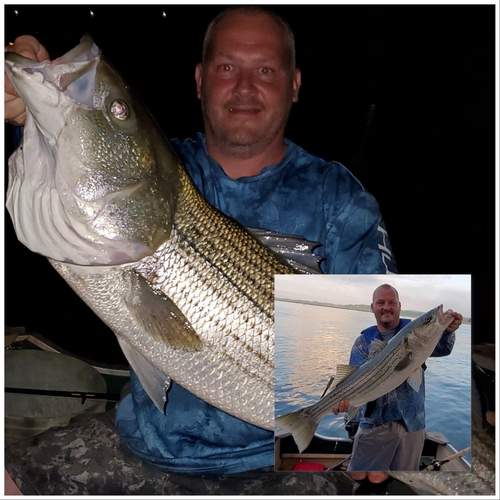 David Levett of Guilford hit one of the popular tidal rivers for night and day striped bass catch-and-release fishing with live eels. Photo illustration courtesy of Captain Morgan