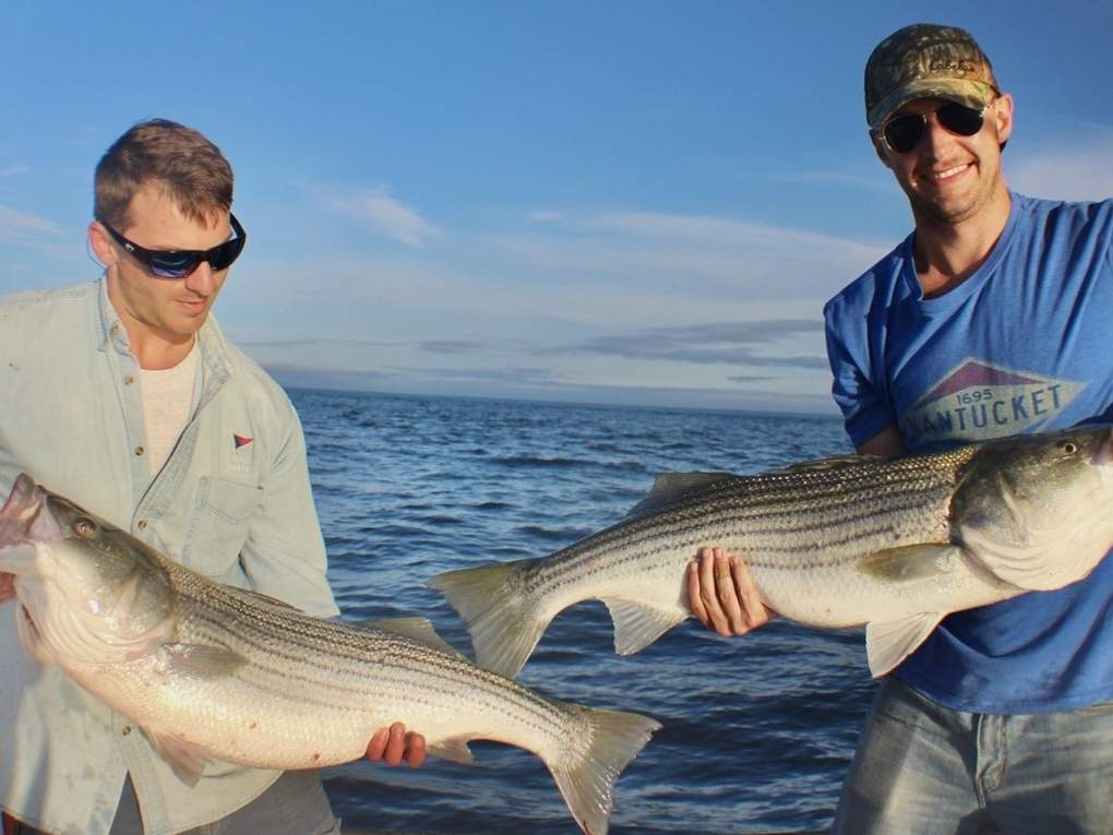 Matt Amatruda of Guilford and Ben Lockhart of Madison paired up on a day that saw some good striped bass catch-and-release fishing. Photo courtesy of Captain Morgan