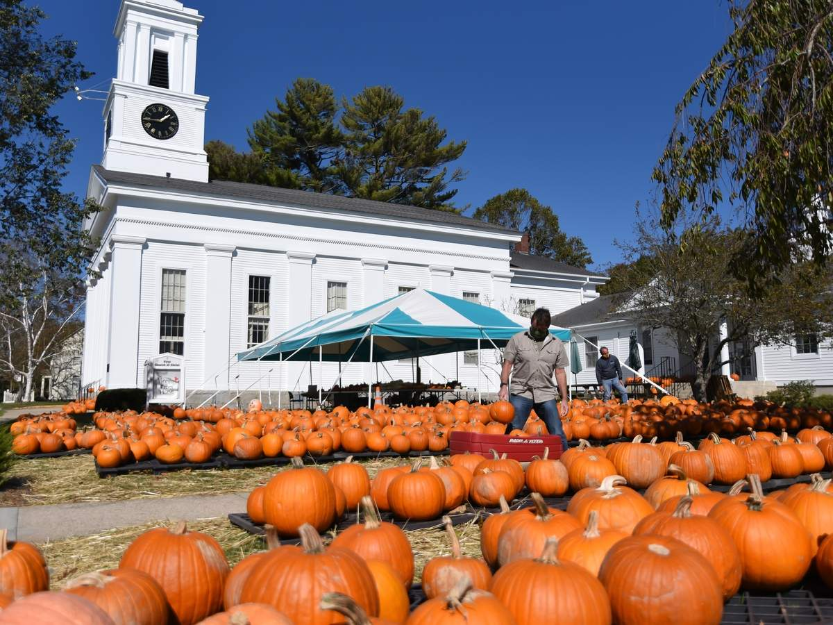 The First Church of Christ in Old Saybrook has pumkins and gords for sale through the end of the month.  John Sullivan hunts through the pumpkin patch looking for 10 similar sized pumpkins for a socially distanced carving contest  between cousins. Photo by Kelley Fryer/Harbor News