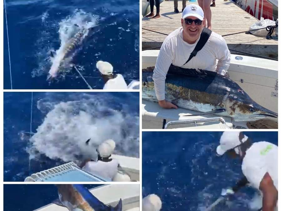 What a catch for John Tracey of Madison when, on a fishing trip to Montego Bay, Jamaica, he hooked and reeled in this unrelenting blue marlin that gave the deck hands quite a tussle. Photo illustration courtesy of Captain Morgan